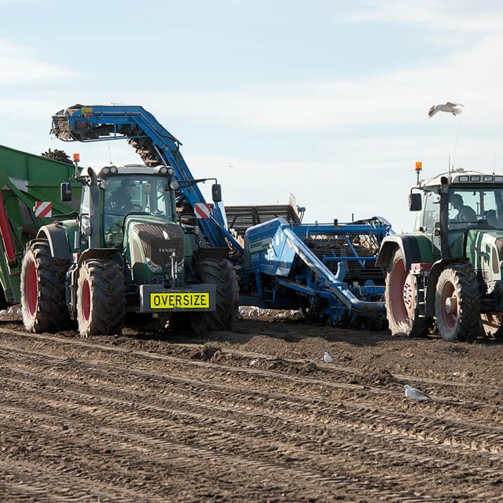 June - general maintenance & harvesting/washing carrots